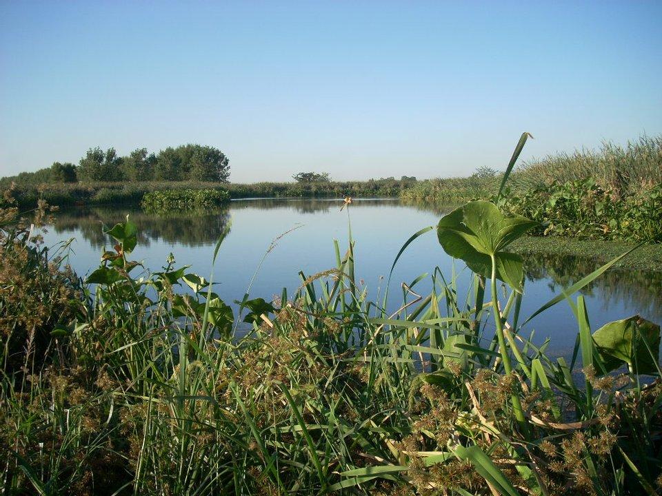 La Reserva Natural Laguna de Rocha